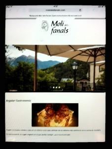 web_moli_ipad