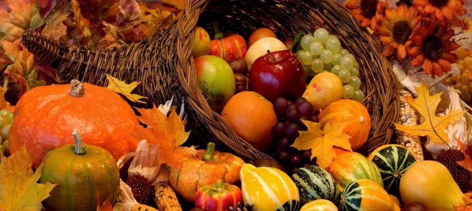 fruits-and-vegetables-autumn-1920x1080-wallpaper539564